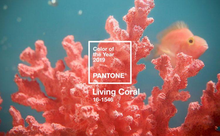 Living Coral é a Cor do Ano 2019 da Pantone